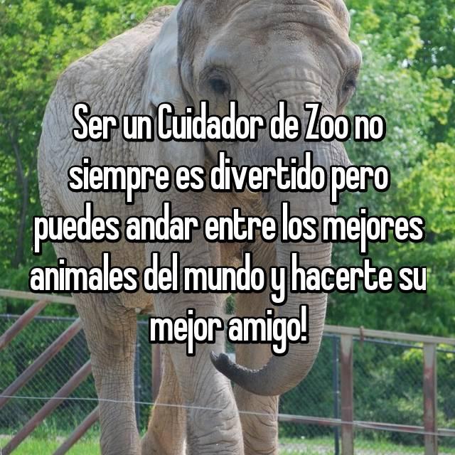 Ser un Cuidador de Zoo no siempre es divertido pero puedes andar entre los mejores animales del mundo y hacerte su mejor amigo!