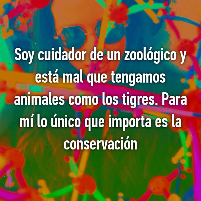 Soy cuidador de un zoológico y está mal que tengamos animales como los tigres. Para mí lo único que importa es la conservación