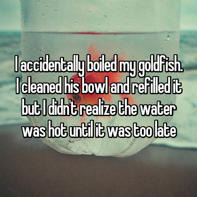 I accidentally boiled my goldfish. I cleaned his bowl and refilled it but I didn't realize the water was hot until it was too late 😭