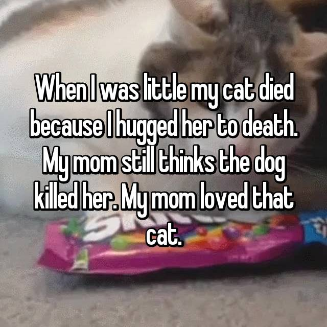 When I was little my cat died because I hugged her to death. My mom still thinks the dog killed her. My mom loved that cat.