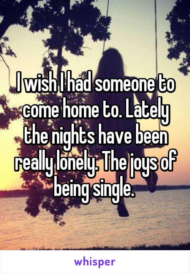 I wish I had someone to come home to. Lately the nights have been really lonely. The joys of being single.