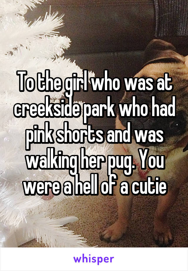 To the girl who was at creekside park who had pink shorts and was walking her pug. You were a hell of a cutie
