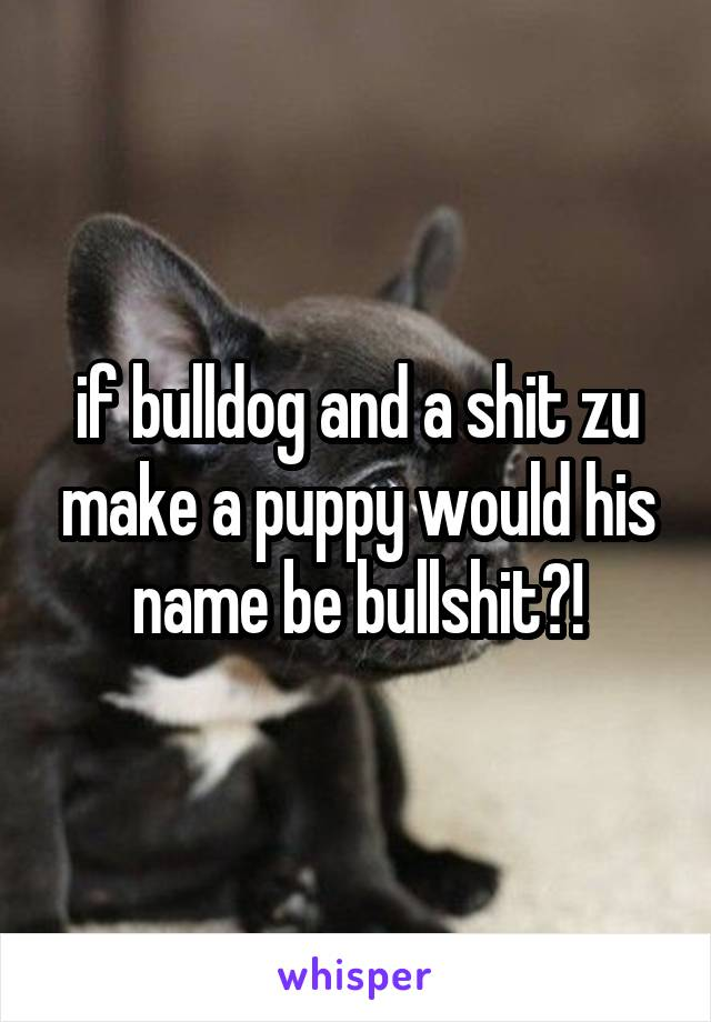 if bulldog and a shit zu make a puppy would his name be bullshit?!