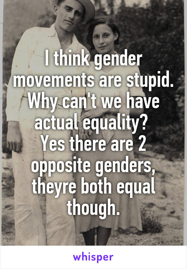 I think gender movements are stupid. Why can't we have actual equality?  Yes there are 2 opposite genders, theyre both equal though.