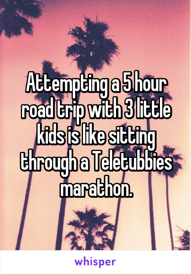 Attempting a 5 hour road trip with 3 little kids is like sitting through a Teletubbies marathon.