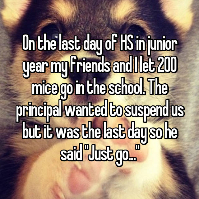 """On the last day of HS in junior year my friends and I let 200 mice go in the school. The principal wanted to suspend us but it was the last day so he said """"Just go..."""""""