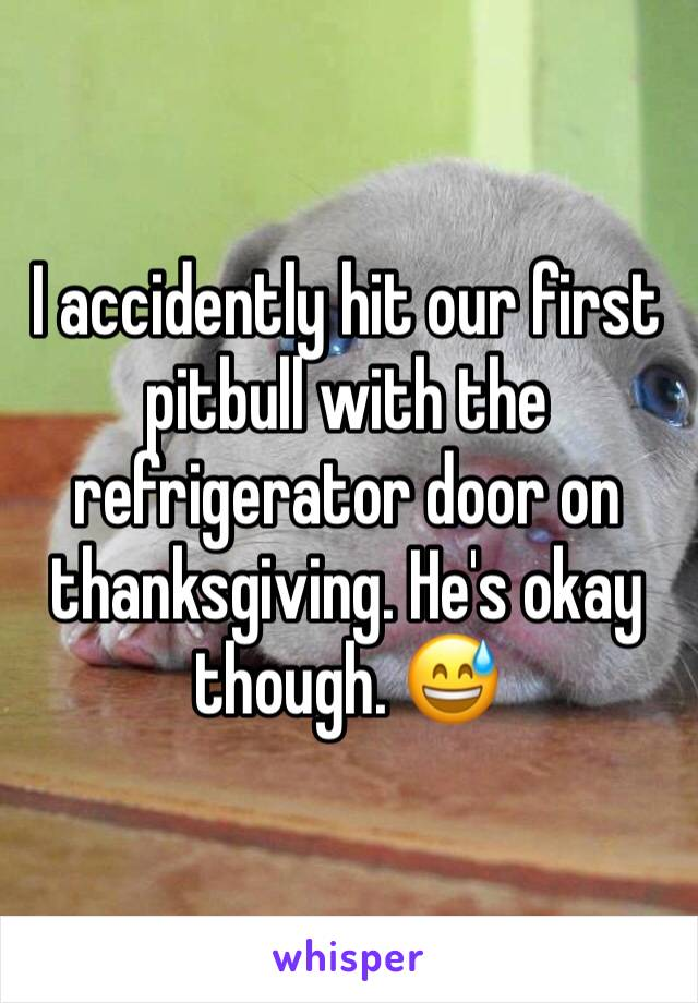 I accidently hit our first pitbull with the refrigerator door on thanksgiving. He's okay though. 😅