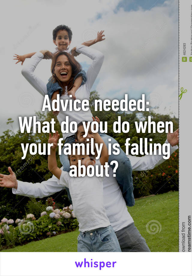 Advice needed: What do you do when your family is falling about?