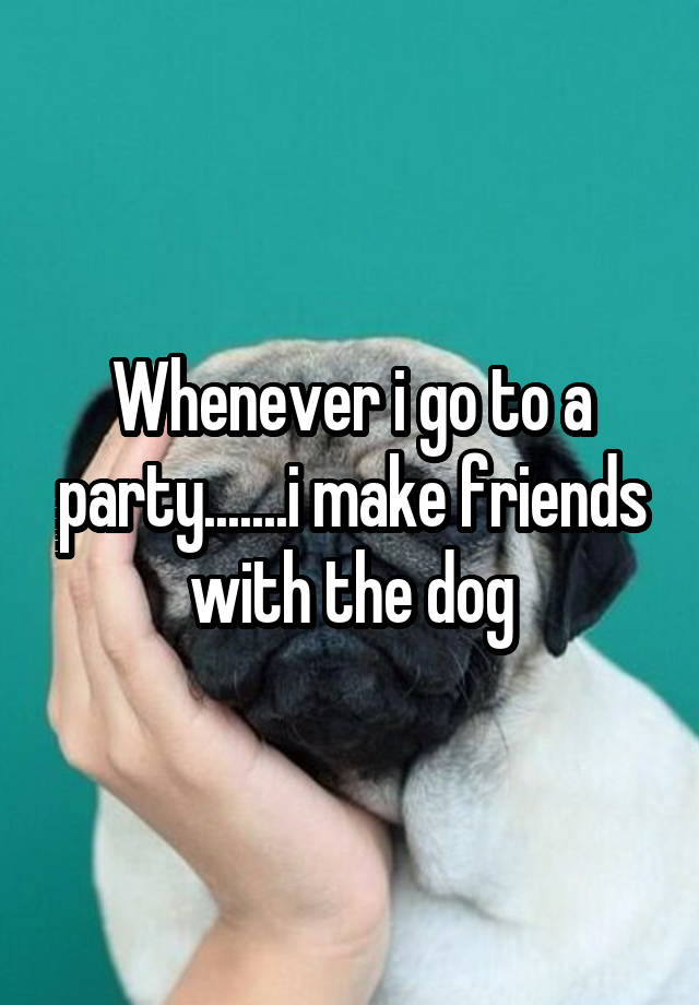 Whenever i go to a party.......i make friends with the dog
