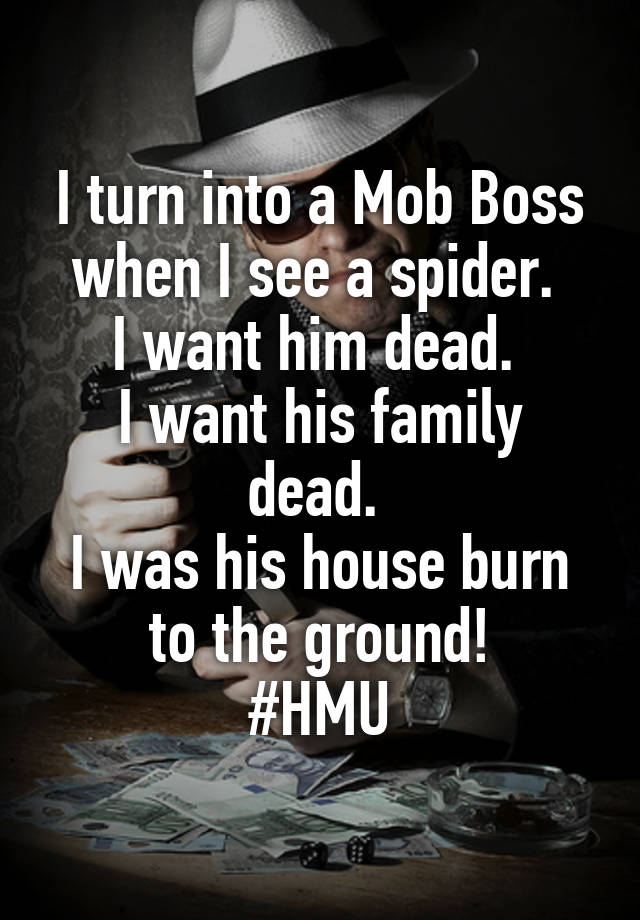 I turn into a Mob Boss when I see a spider.  I want him dead.  I want his family dead.  I was his house burn to the ground! #HMU