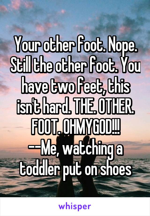 Your other foot. Nope. Still the other foot. You have two feet, this isn't hard. THE. OTHER. FOOT. OHMYGOD!!! --Me, watching a toddler put on shoes
