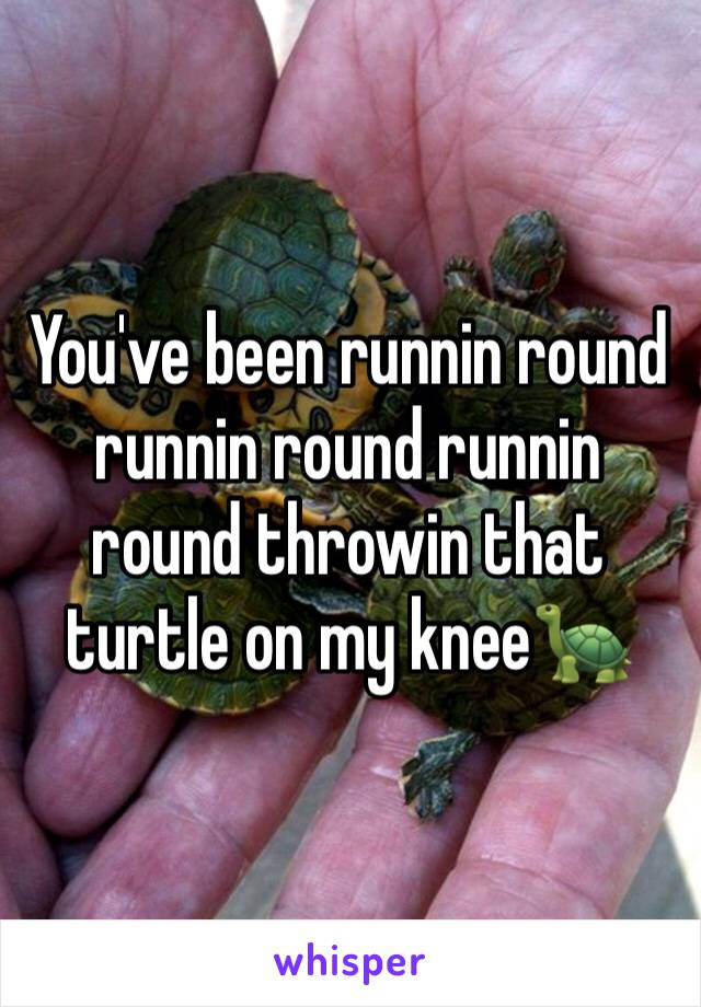 You've been runnin round runnin round runnin round throwin that turtle on my knee🐢