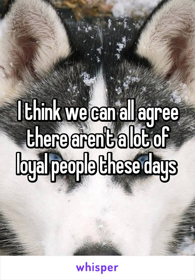 I think we can all agree there aren't a lot of loyal people these days