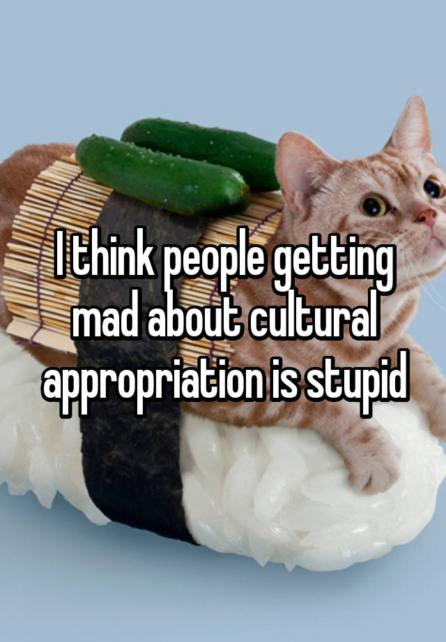 I think people getting mad about cultural appropriation is stupid