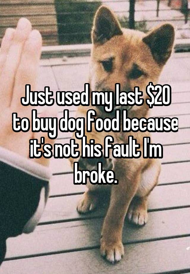 Just used my last $20 to buy dog food because it's not his fault I'm broke.
