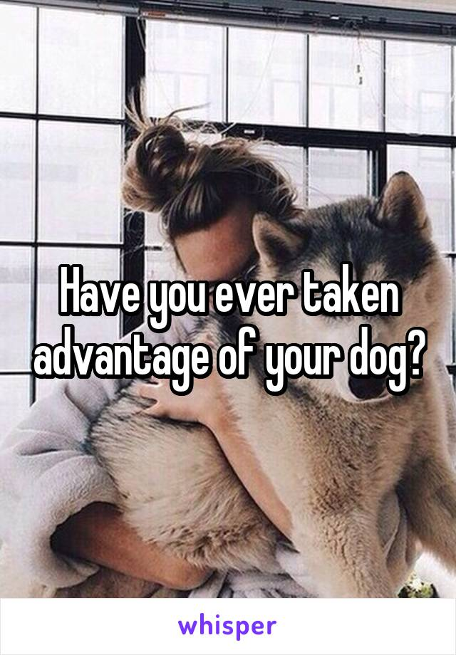 Have you ever taken advantage of your dog?