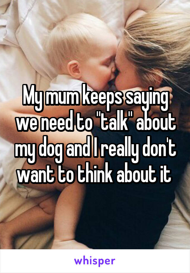 """My mum keeps saying we need to """"talk"""" about my dog and I really don't want to think about it"""
