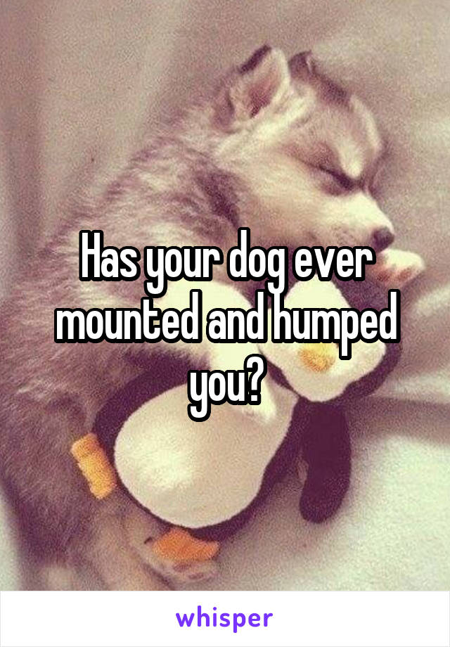 Has your dog ever mounted and humped you?