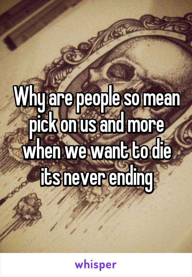 Why are people so mean pick on us and more when we want to die its never ending
