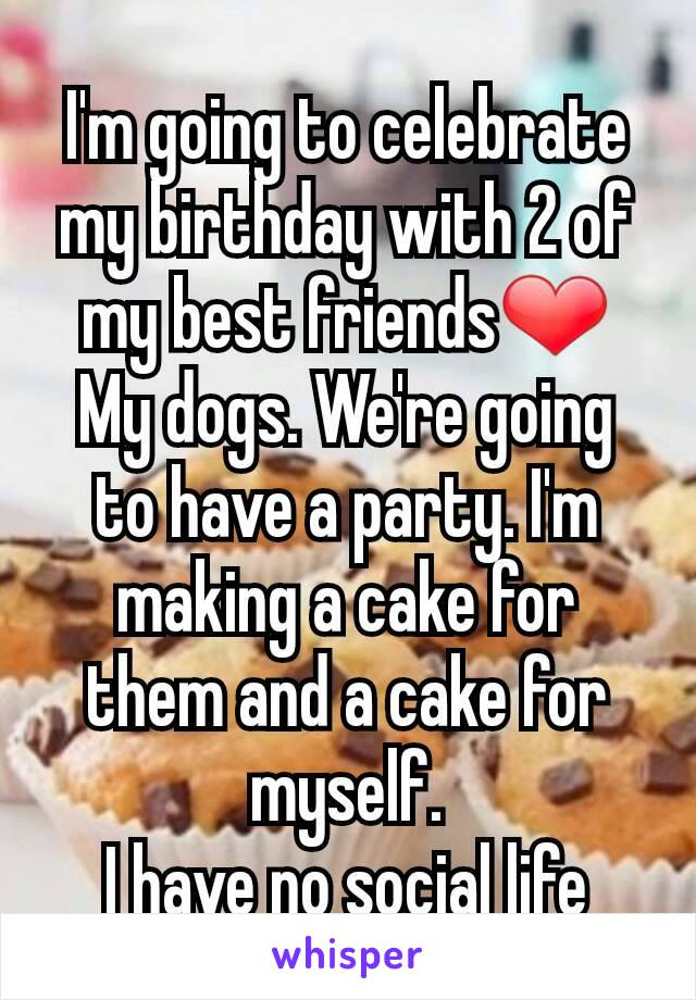 I'm going to celebrate my birthday with 2 of my best friends❤ My dogs. We're going to have a party. I'm making a cake for them and a cake for myself. I have no social life