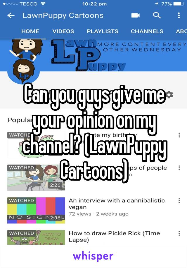 Can you guys give me your opinion on my channel? (LawnPuppy Cartoons)