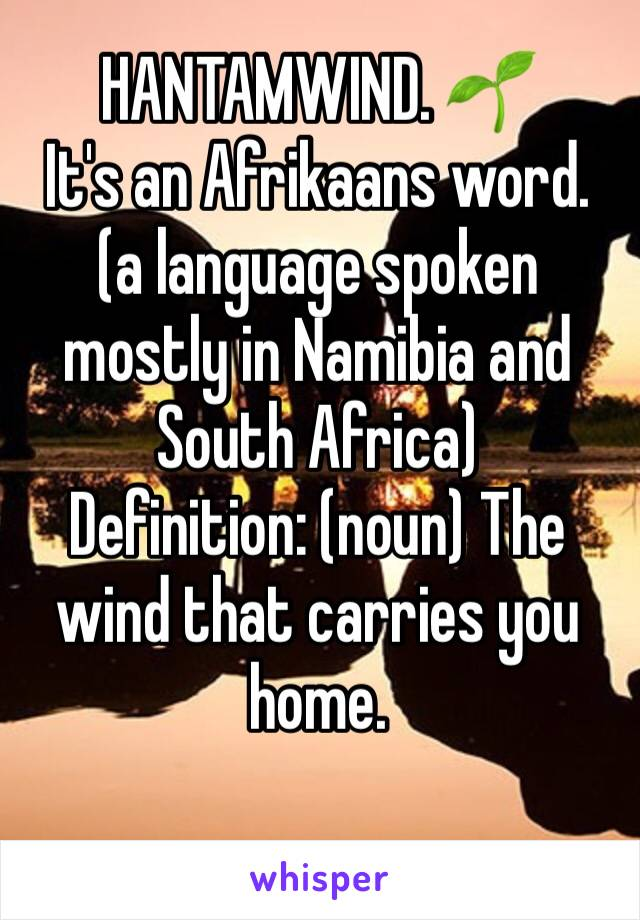 HANTAMWIND. 🌱 It's an Afrikaans word. (a language spoken mostly in Namibia and South Africa)  Definition: (noun) The wind that carries you home.