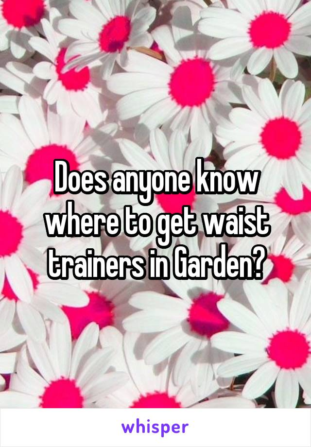 Does anyone know where to get waist trainers in Garden?