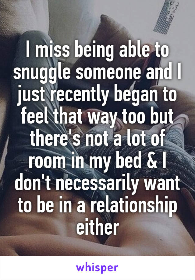 I miss being able to snuggle someone and I just recently began to feel that way too but there's not a lot of room in my bed & I don't necessarily want to be in a relationship either