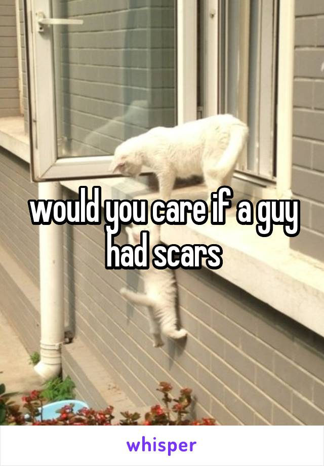 would you care if a guy had scars