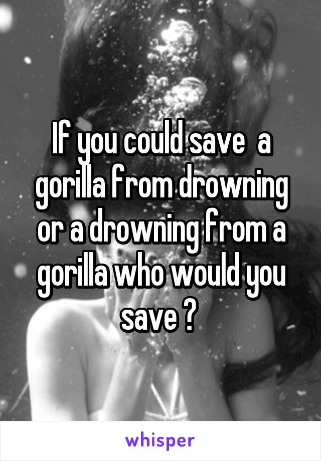If you could save  a gorilla from drowning or a drowning from a gorilla who would you save ?