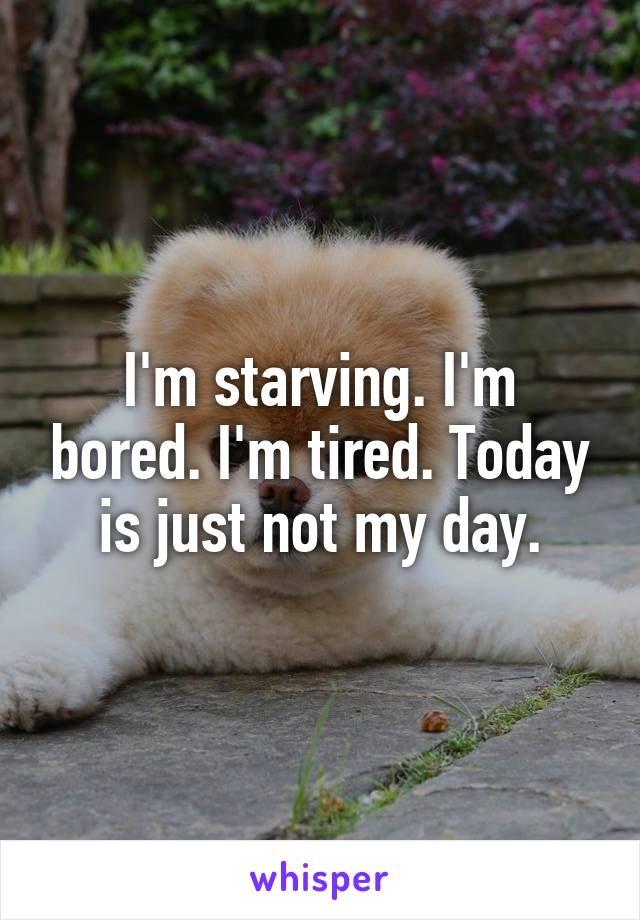 I'm starving. I'm bored. I'm tired. Today is just not my day.