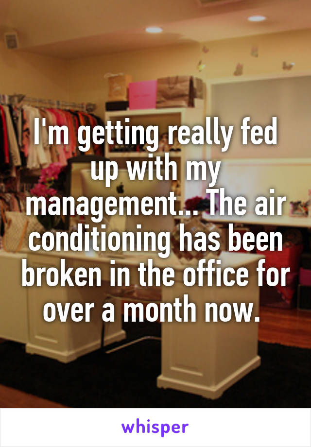 I'm getting really fed up with my management... The air conditioning has been broken in the office for over a month now.