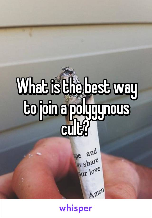 What is the best way to join a polygynous cult?