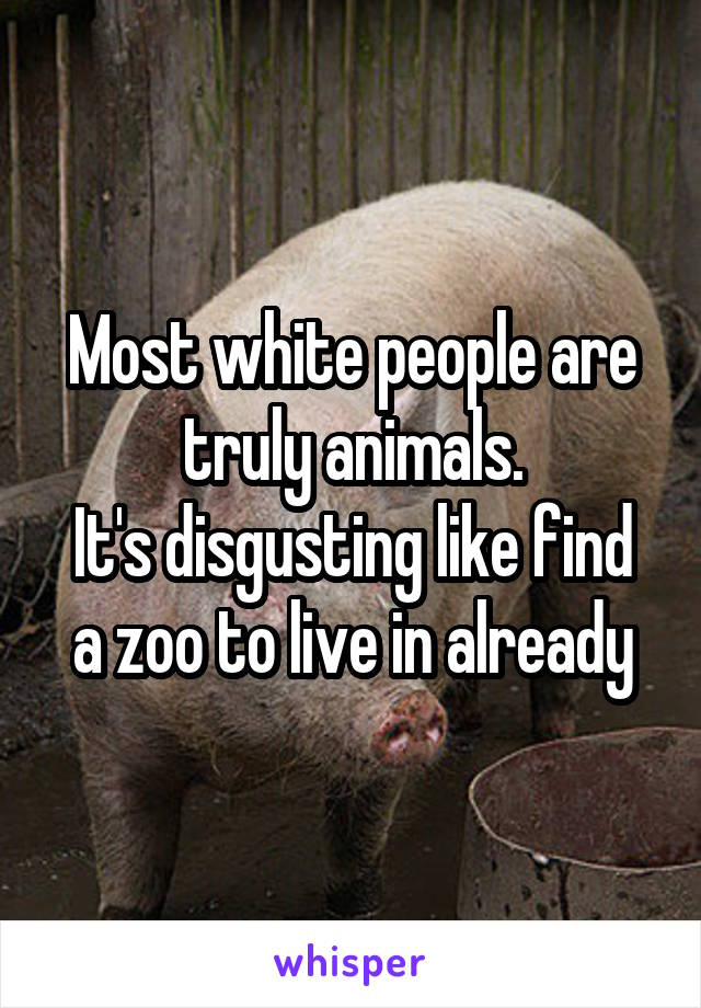 Most white people are truly animals. It's disgusting like find a zoo to live in already