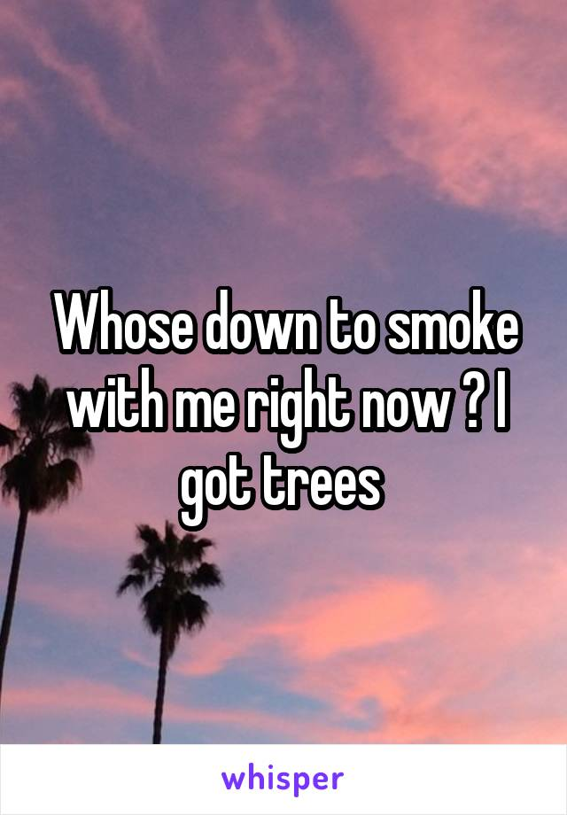 Whose down to smoke with me right now ? I got trees