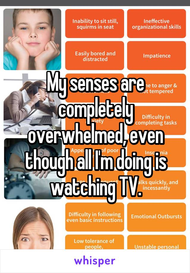My senses are completely overwhelmed, even though all I'm doing is watching TV.