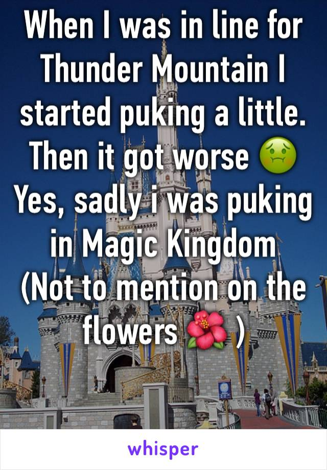 When I was in line for Thunder Mountain I started puking a little. Then it got worse 🤢 Yes, sadly i was puking in Magic Kingdom  (Not to mention on the flowers 🌺 )
