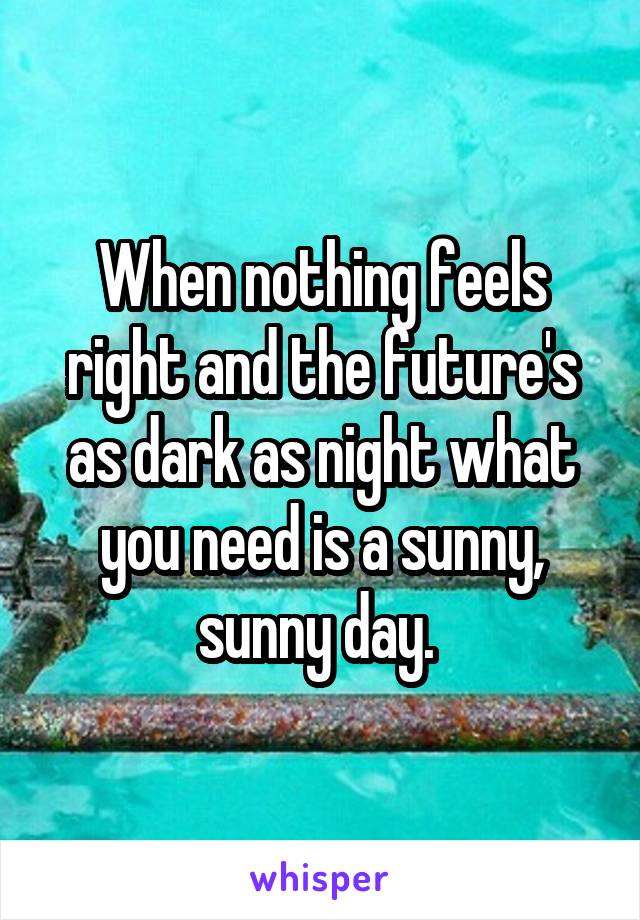 When nothing feels right and the future's as dark as night what you need is a sunny, sunny day.