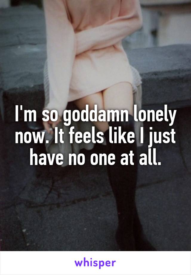 I'm so goddamn lonely now. It feels like I just have no one at all.