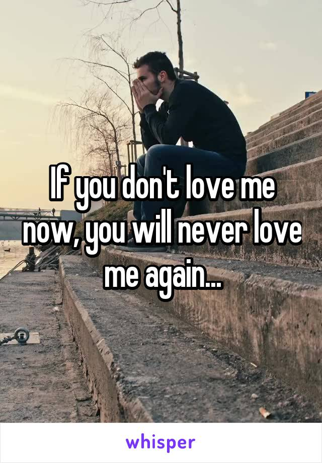 If you don't love me now, you will never love me again...