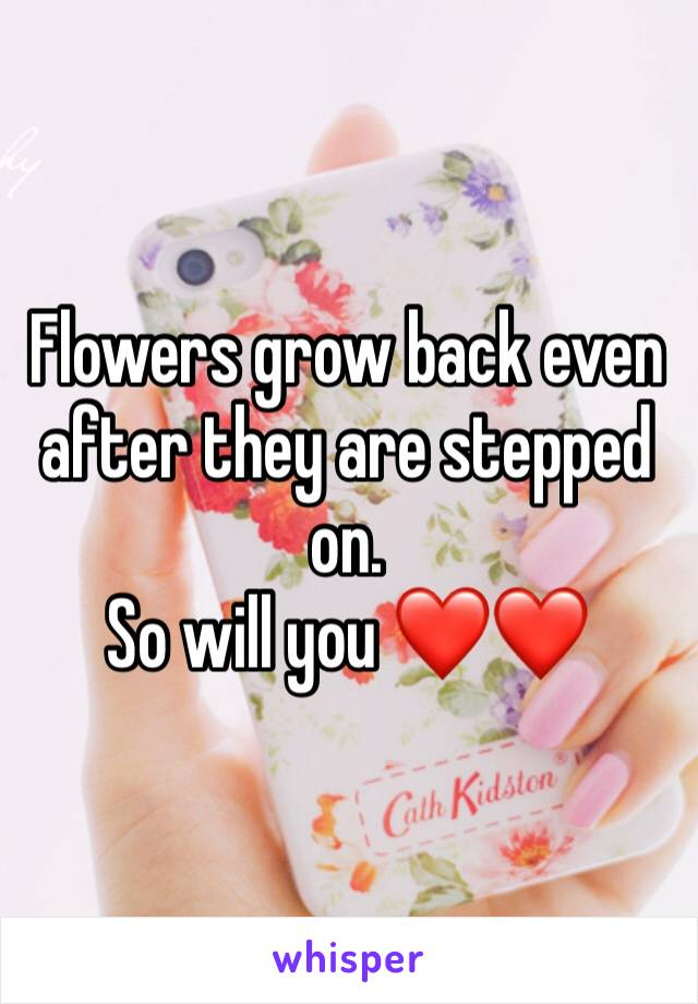 Flowers grow back even after they are stepped on.  So will you ❤️❤️