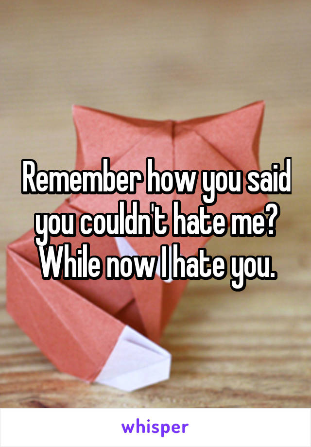 Remember how you said you couldn't hate me? While now I hate you.