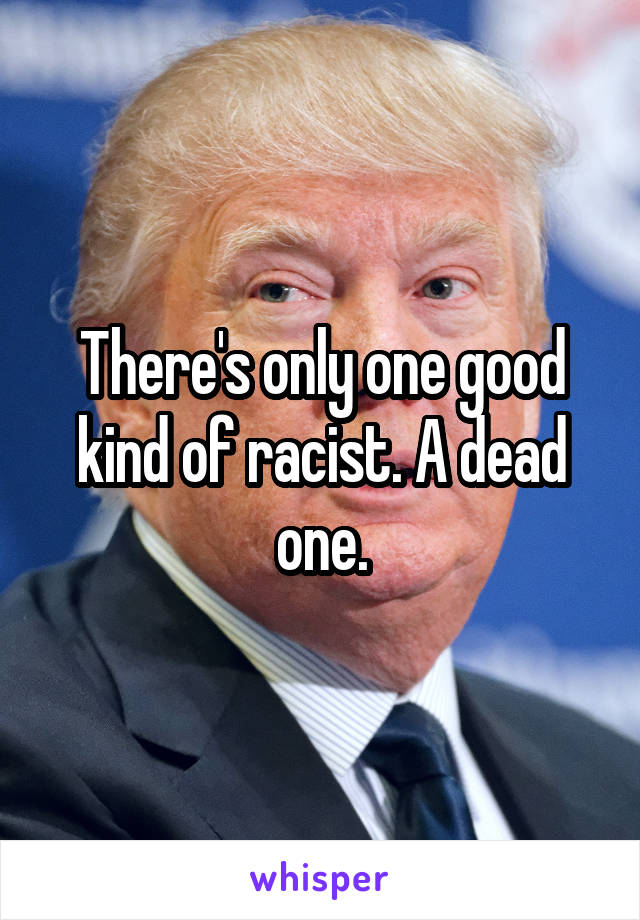 There's only one good kind of racist. A dead one.