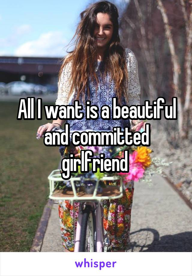 All I want is a beautiful and committed girlfriend