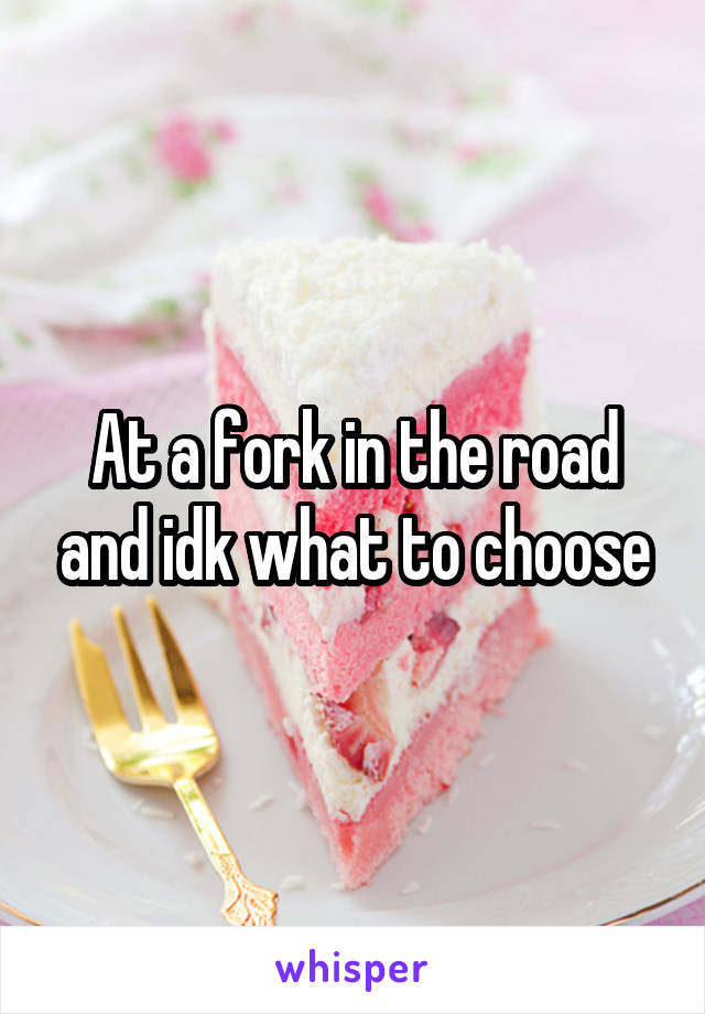 At a fork in the road and idk what to choose