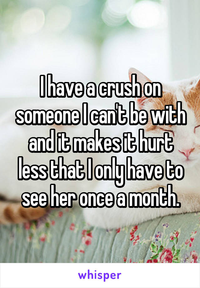 I have a crush on someone I can't be with and it makes it hurt less that I only have to see her once a month.