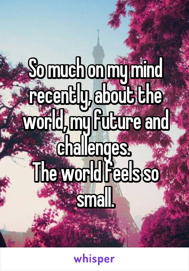 So much on my mind recently, about the world, my future and challenges.  The world feels so small.