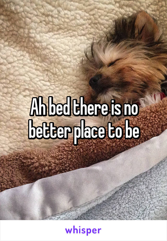 Ah bed there is no better place to be