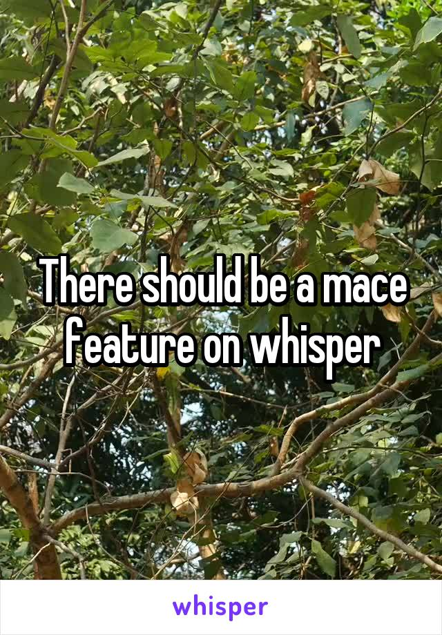 There should be a mace feature on whisper