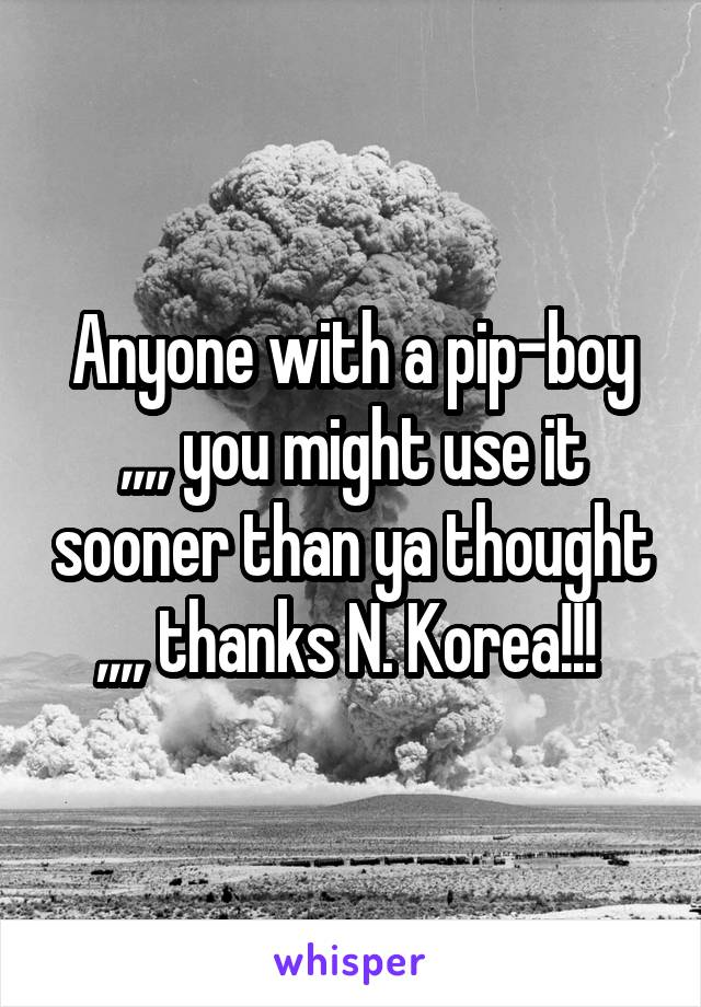 Anyone with a pip-boy ,,,, you might use it sooner than ya thought ,,,, thanks N. Korea!!!